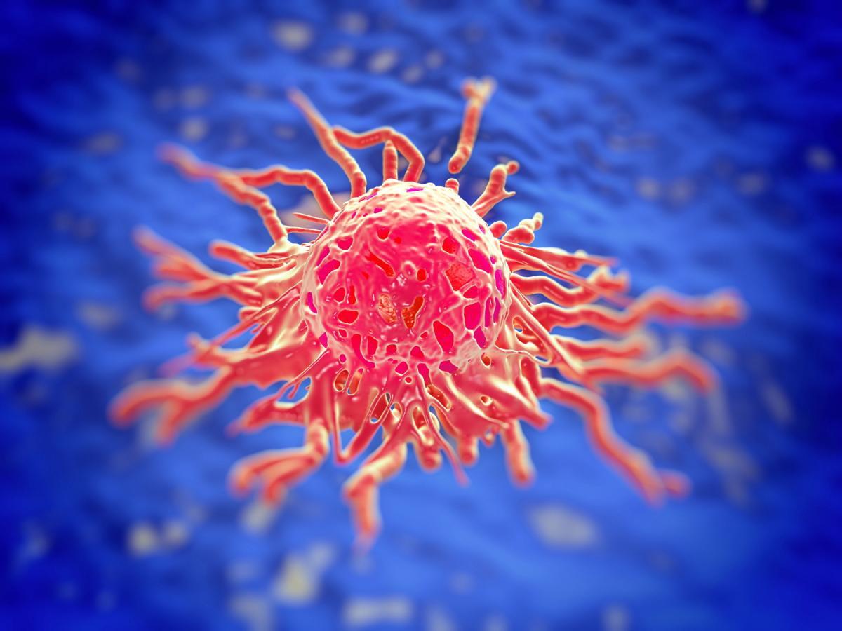 Szenzációs gyógyszerteszt: egy új gyógyszer képes megölni a rákos sejteket anélkül, hogy károsítaná a közeli egészséges szöveteket