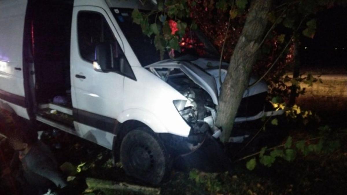 31 migránssal volt teletömve a kisbusz, amikor fának hajtott az szerb embercsempész