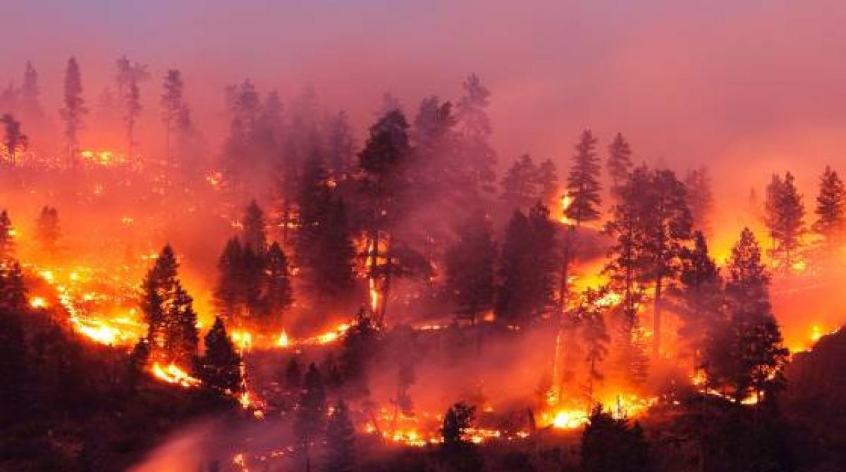 Tovább hosszabbodik a tűzgyújtási tilalom
