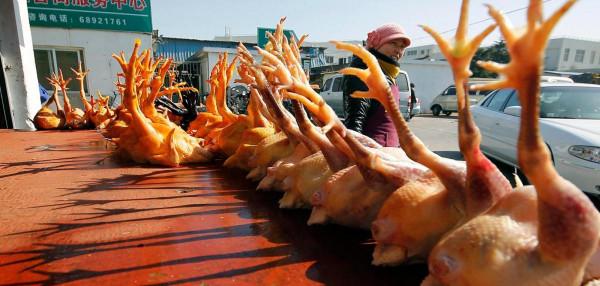 WELT: H10N3 madárinfluenza-fertőzést igazoltak egy kínai férfinál