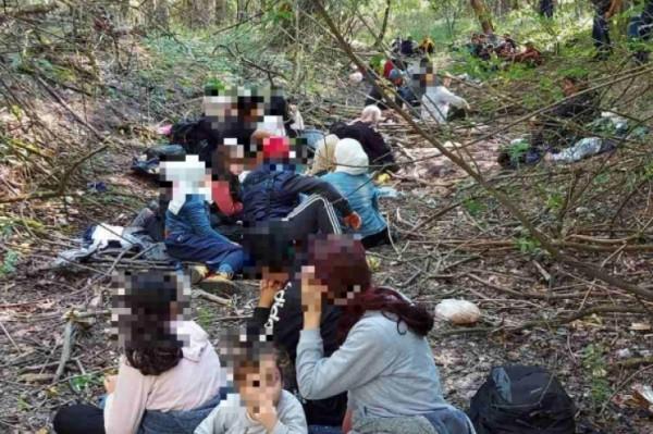 A rendőrök feltartóztattak 44 illegális migránst