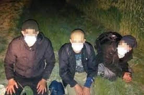 12 óra alatt 9 szír és afgán bevándorló