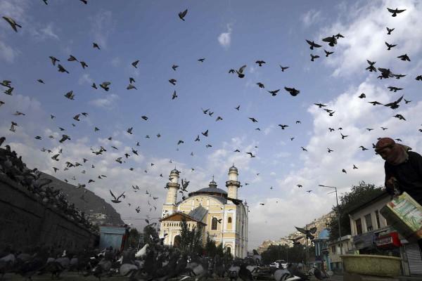 Önsorsrontás: Németország finanszírozta a radikális iszlám fészkének számító afgán mecsetet